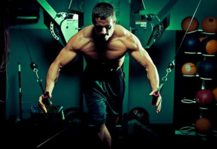 L'anabolisme musculaire prise de masse