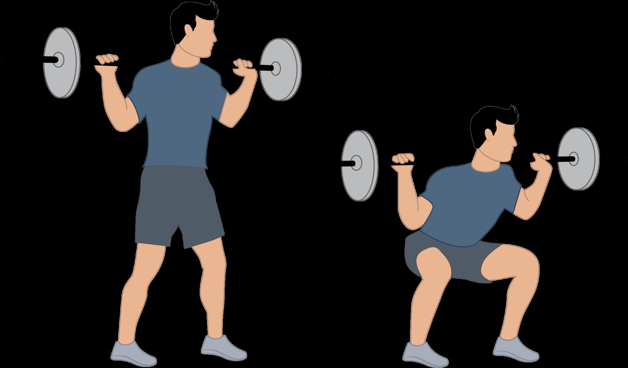 L'exercice du squat à la barre