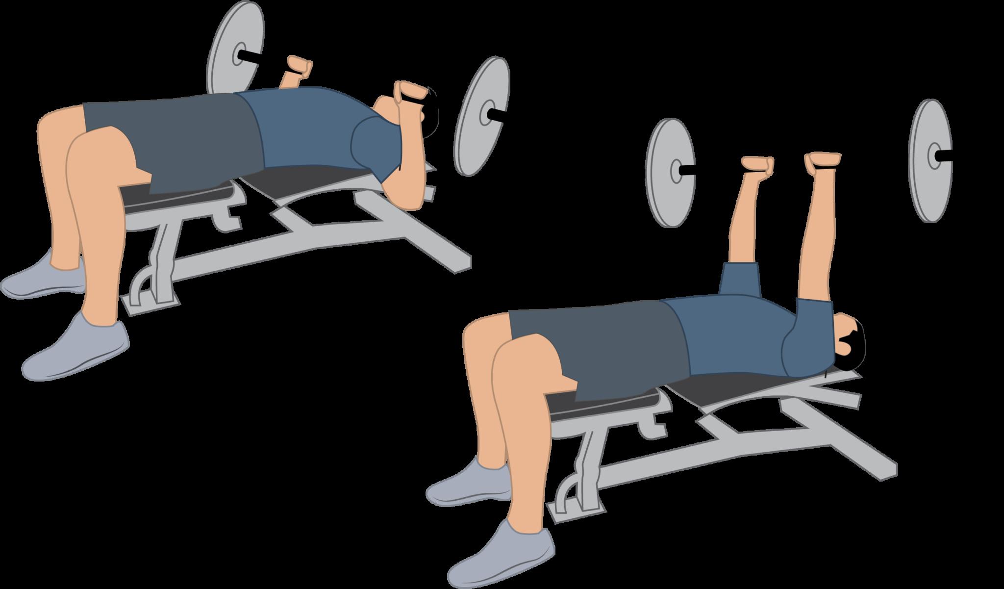 Exercice du développé couché