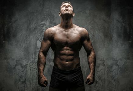 Métabolisme prise de masse