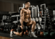 Les causes de la gynécomastie et la musculation