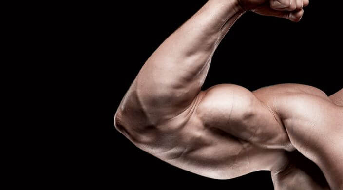 Comment se muscler les bras rapidementet efficacement ?