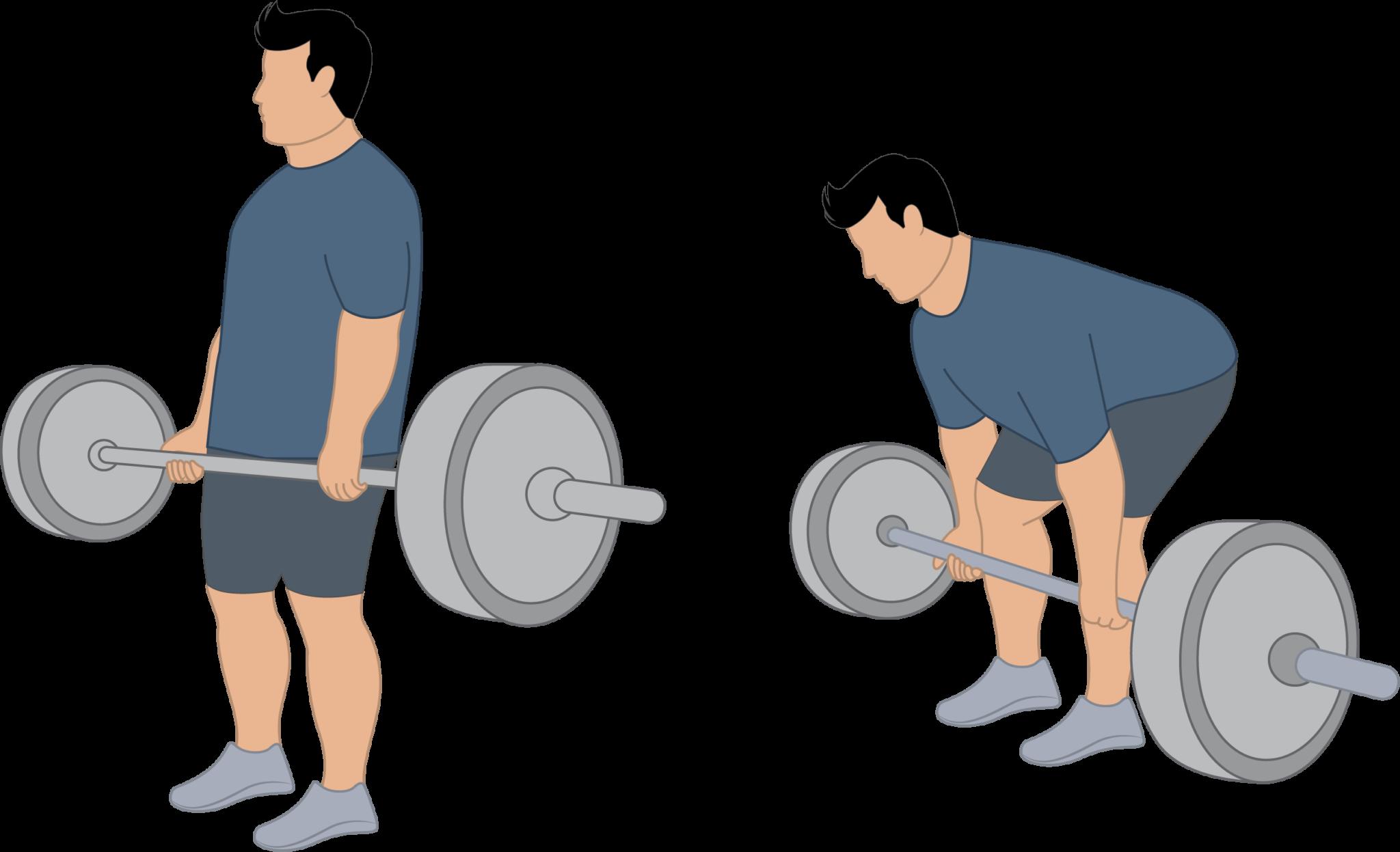 L'exercice du soulevé de terre pour les hanches