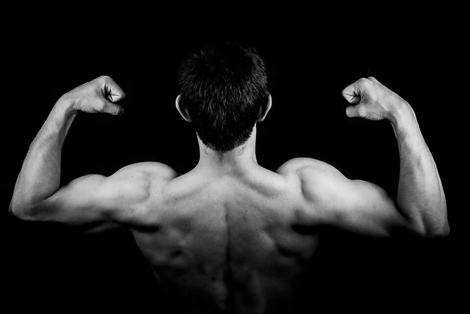 Comment bien développer et se muscler l'arrière de l'épaule ?