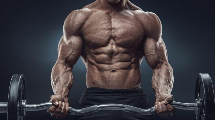 Drop set musculation : Comment optimiser votre prise de masse ?