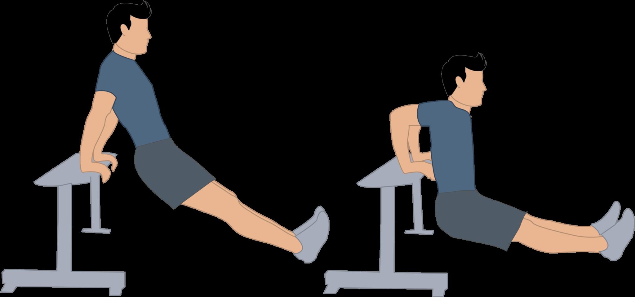 Exercice des dips à la chaise