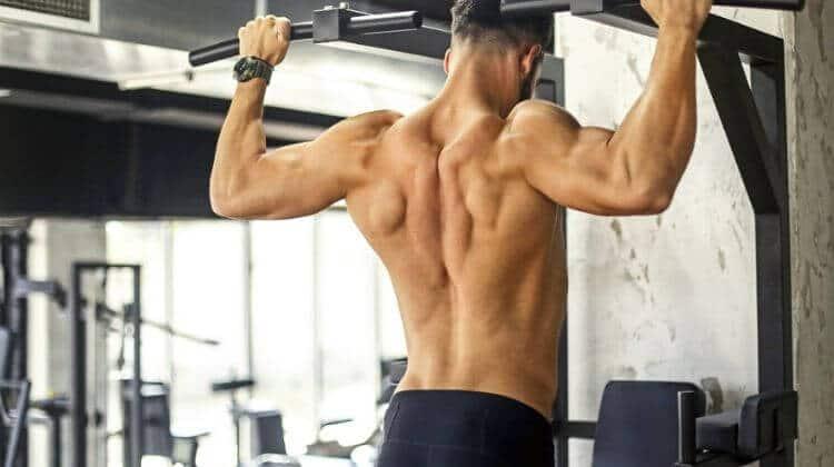 Prise de masse musculaire rapide : 7 méthodes approuvées par la science