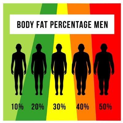 Comparaison graisse corporelle