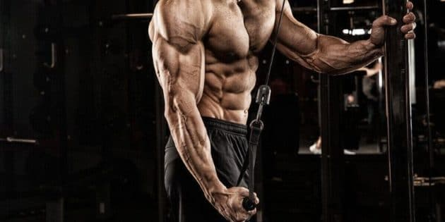 bi set musculation article