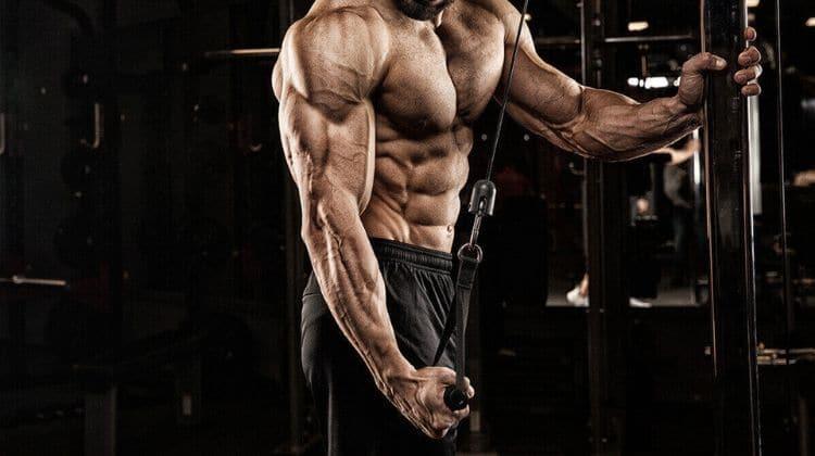 Le biset : tout savoir sur cette méthode de musculation