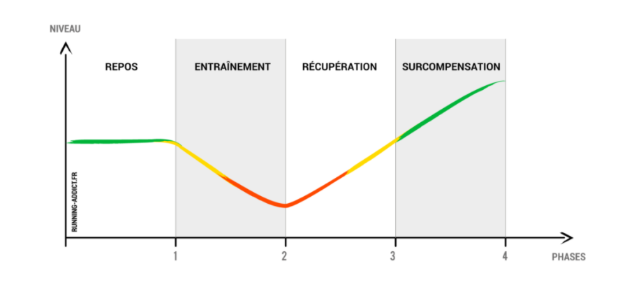 Importance d'optimiser son temps de récupération lors de ses entrainements