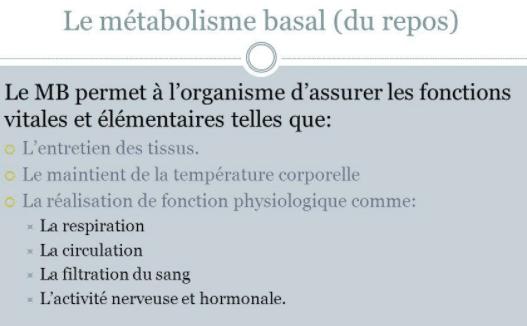 Métabolisme basal au repos