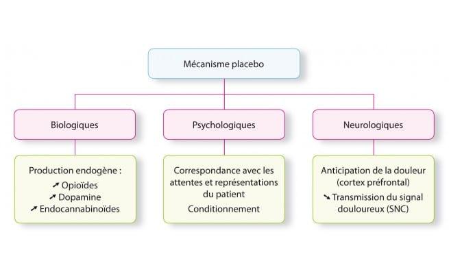 mecanisme de l'effet placebo
