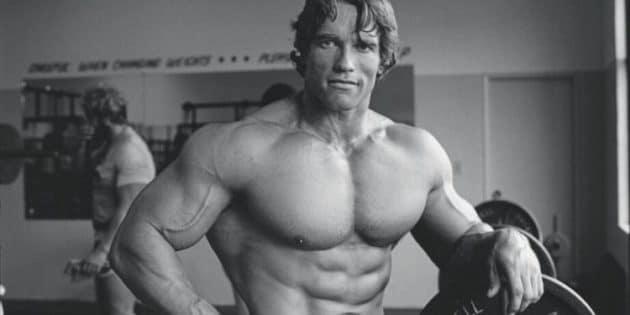Musculation d'Arnold Schwarzenegger