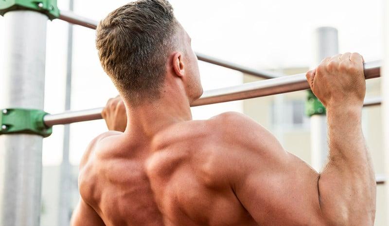 muscler ses biceps sans matériel musculation