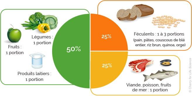 Apport journalier en protéine