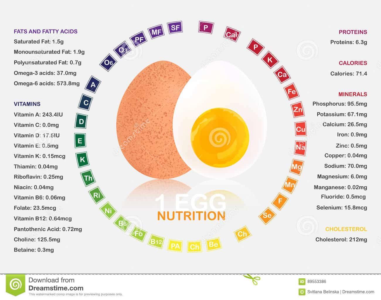 Vitamines présentes dans l'oeuf