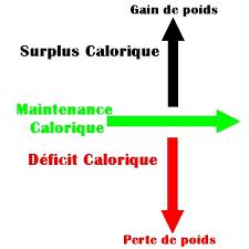 apports-caloriques-homme