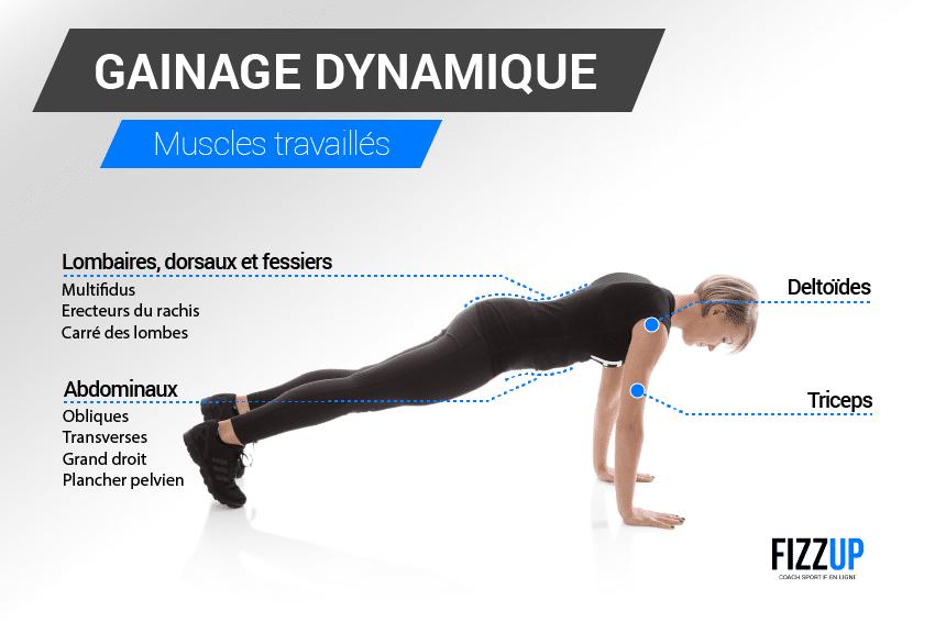 gainage-dynamique-muscles