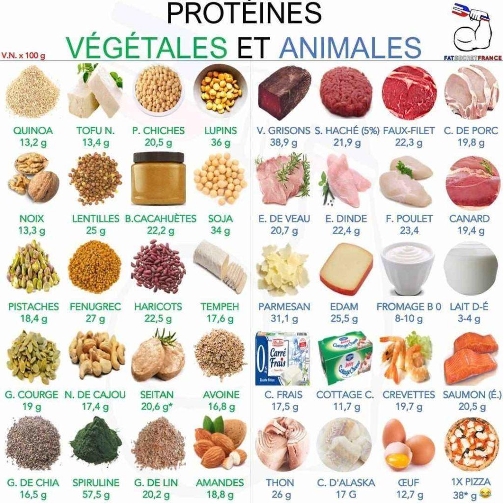 aliments riches en protéine