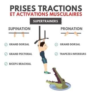 traction supination et pronation